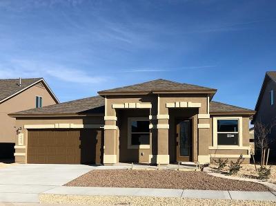 El Paso Single Family Home For Sale: 14933 Sunny Land Avenue