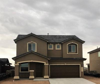 El Paso Single Family Home For Sale: 13490 Coldham Street