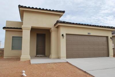 El Paso Single Family Home For Sale: 3128 Randall Joseph