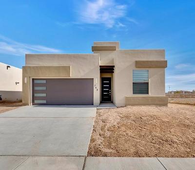 El Paso Single Family Home For Sale: 1041 Shields Street