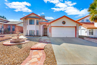 El Paso Single Family Home For Sale: 12036 Meadow Gate Drive