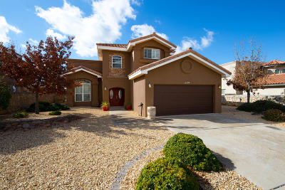 El Paso Single Family Home For Sale: 6394 Franklin Summit Drive