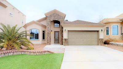 El Paso Single Family Home For Sale: 13040 Birds View Circle