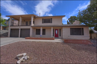 El Paso Single Family Home For Sale: 7009 Toluca Drive