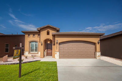 El Paso Single Family Home For Sale: 3452 David Palacio Drive