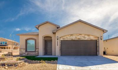 El Paso Single Family Home For Sale: 3356 David Palacio Drive