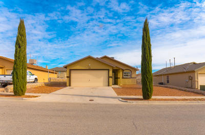 Horizon City Rental For Rent: 480 Goldshire Place