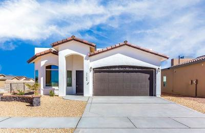 El Paso Single Family Home For Sale: 6081 Pocket Place
