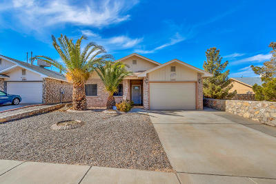 El Paso Single Family Home For Sale: 3297 Catherine Ann Drive