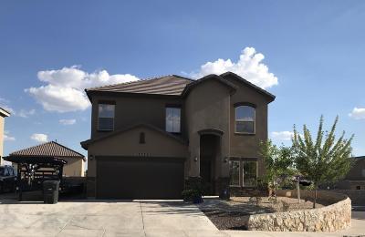Horizon City Single Family Home For Sale: 12320 Chelmsford Avenue