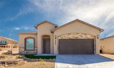 Horizon City Single Family Home For Sale: 13621 Matfen Avenue
