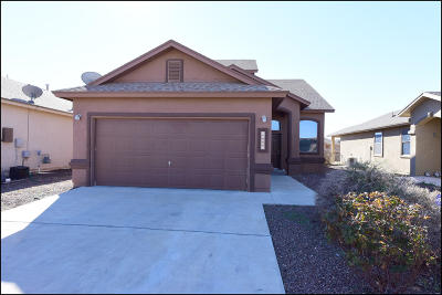 El Paso Single Family Home For Sale: 14276 Rattler Point