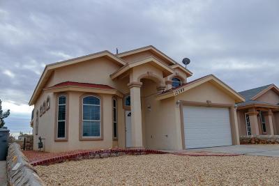 El Paso Single Family Home For Sale: 12380 Tierra Alamo Drive