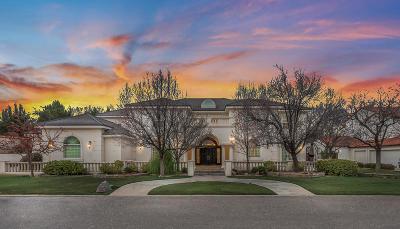 Single Family Home For Sale: 904 Vista Mia Court