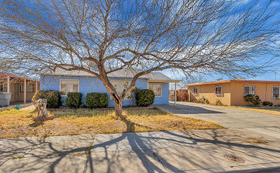 El Paso Single Family Home For Sale: 6408 Mohawk Avenue