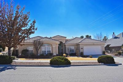 El Paso Single Family Home For Sale: 6716 Isla Del Rey Drive
