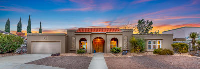 El Paso Single Family Home For Sale: 809 Pintada Place