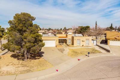 El Paso Single Family Home For Sale: 3212 Nederland Lane