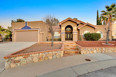 El Paso Single Family Home For Sale: 6421 Isla Del Rey Drive