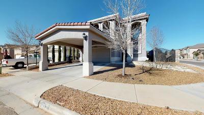 El Paso Single Family Home For Sale: 13231 Apostle