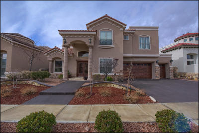 El Paso Single Family Home For Sale: 1251 Franklin Perch Place