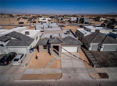 El Paso Single Family Home For Sale: 421 S S. Manzanita Drive