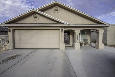 El Paso Single Family Home For Sale: 12405 Jon Evans Drive