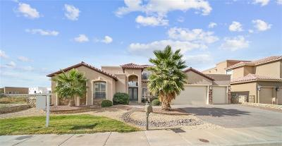 El Paso TX Single Family Home For Sale: $389,900