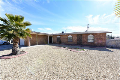 El Paso Single Family Home For Sale: 11100 Seaview Street