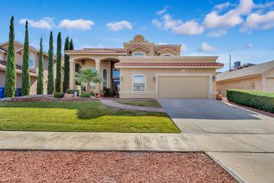El Paso Single Family Home For Sale: 7528 Le Conte Drive