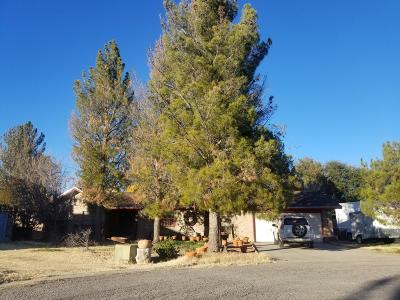 El Paso Single Family Home For Sale: 524 Crossbend Court