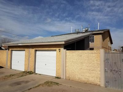 El Paso TX Multi Family Home For Sale: $260,000