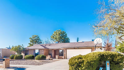 El Paso Single Family Home For Sale: 825 Espolon Drive