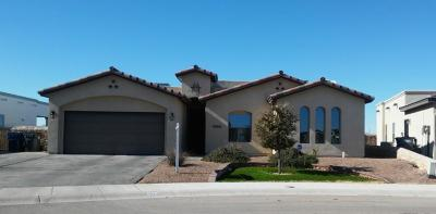 El Paso Single Family Home For Sale: 3053 Snowy Point Drive