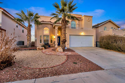 El Paso Single Family Home For Sale: 7407 Camino Del Sol Drive