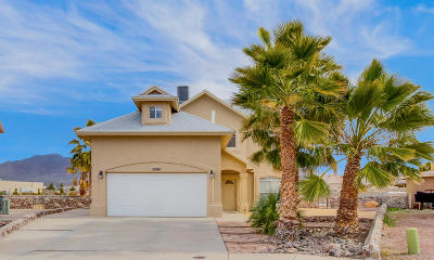 El Paso Single Family Home For Sale: 7404 Plaza Redonda Drive