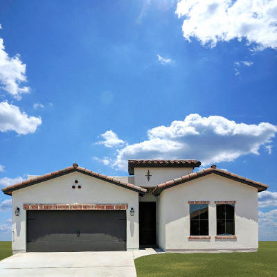 El Paso TX Single Family Home For Sale: $184,950
