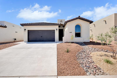 El Paso Single Family Home For Sale: 13672 Samlesbury Avenue