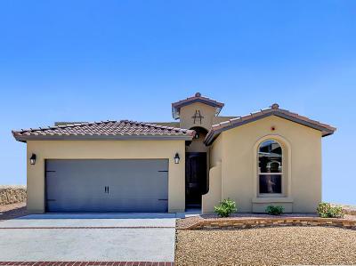El Paso TX Single Family Home For Sale: $161,450
