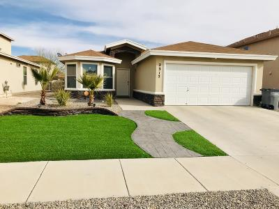 El Paso TX Single Family Home For Sale: $142,999