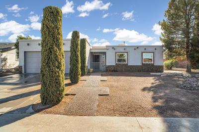 El Paso TX Single Family Home For Sale: $165,500