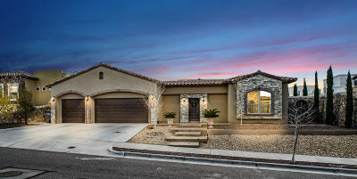 El Paso Single Family Home For Sale: 6572 Contessa Ridge