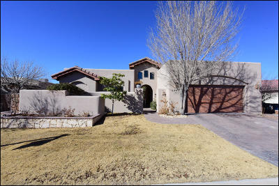 El Paso Single Family Home For Sale: 5909 Arbol Place