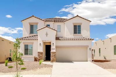 Single Family Home For Sale: 13637 Matfen Avenue