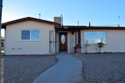 Single Family Home For Sale: 9021 Mount Etna Drive