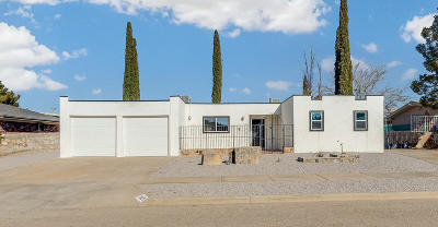 Horizon City Single Family Home For Sale: 3629 Colville Drive
