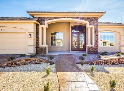 El Paso Single Family Home For Sale: 6413 Passo Via Street