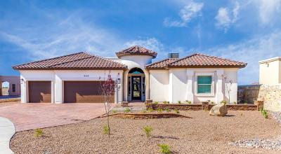 El Paso Single Family Home For Sale: 6424 Passo Via Street