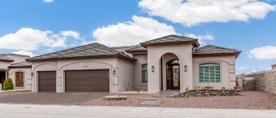 El Paso Single Family Home For Sale: 955 Tramonto Vista Court