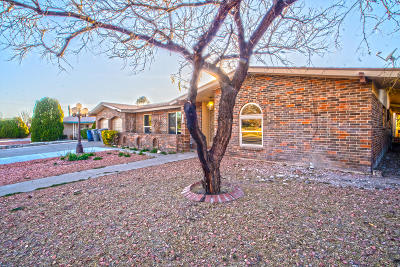 Single Family Home For Sale: 1653 Lomaland Drive